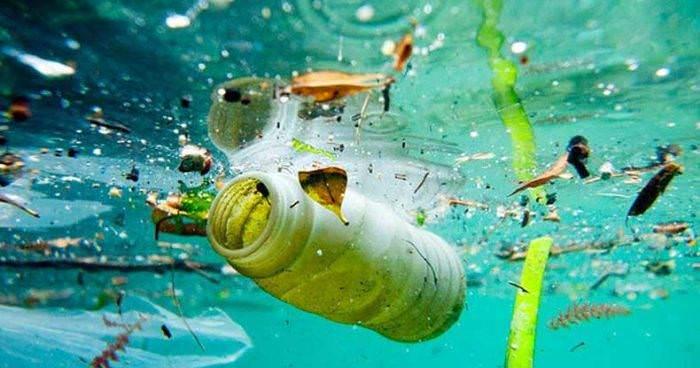 کدام زبالهها بیشتر اقیانوسها را آلوده کردهاند؟
